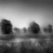 "Title: ""Summer rain 07, b&w"", june 2013 (printed on ""bamboo"")"