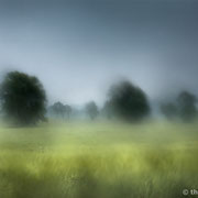 "Summer rain 07, june 2013 (printed on ""bamboo"")"