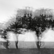 """Title: """"3 little trees 03, b&w"""", august 2014 (see also """"blurry trees"""", printed on """"bamboo"""")"""