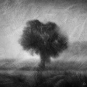 """Title: """"Lost in tranquility 09, b&w"""", july 2014, composite photography 2018 (printed on """"bamboo"""")"""
