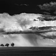 "Title: ""3 trees, wall of clouds 01, b&w"", 2016 (printed on ""fine art baryta"")"