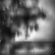 "Title: ""Beautiful rainy day 07, b&w"", 2020 (printed on ""bamboo"")"