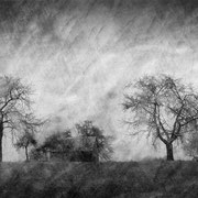 """Title: """"Lost in tranquility 16, b&w"""", january 2015, compositing photo 2020 (printed on """"bamboo"""")"""