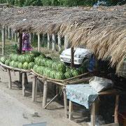 Melonen ohne ende