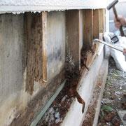⑤土台木材は全損状態。
