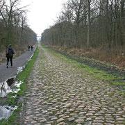 La trouée d'Arenberg (célèbre difficulté du Paris-Roubaix)