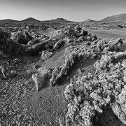 Lanzarote Mar de Lava