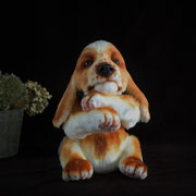 """Hund """"Mattis""""(verkauft)"""