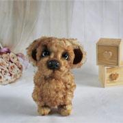 "Hund ""Jack""(verkauft)"