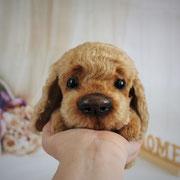 "Hund ""Baddy""(verkauft)"