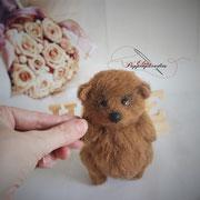 "Teddy ""Afanasij""(verkauft)"
