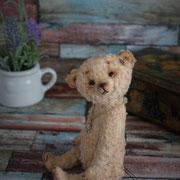 "Teddy ""Bertha"" (verkauft)"