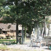 Kampong Thom Buddha-Satuen