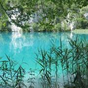 Plitvicer Seen - unfassbar türkisfarbenes Wasser!