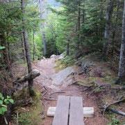 Wanderweg am Fuße des Mount Washington