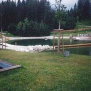 Das Waldschwimmbad