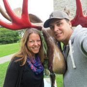 Bennington - doch noch ein Moose entdeckt ;)
