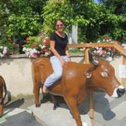 Bull-Riding auf Schweizerisch :)