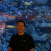 Shark Reef im Mandalay Bay