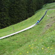 Heading down alpine luge ride on Mt. Pilatus