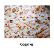 hule PVC Coquilles