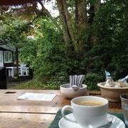 カフェから中庭をのぞむ