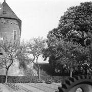 Der Burgturm bei Davensberg