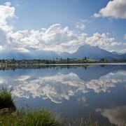 Hopfen am See im Mai mit Säuling im Hintergrund