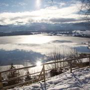 Burgruine Hopfensee - Blick auf den gefrorenen Hopfensee