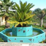 Teneriffa und Palmen gehören zusammen