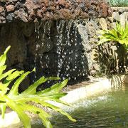 Einer der Wasserfälle auf der Finca