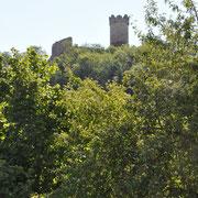 Ruine Mühlburg mal von unten