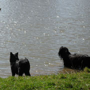 Exel , sein Freund Snoopy und das Seeungeheuer