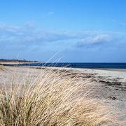 Der weitläufige und breite Sandstrand in Kronsgaard