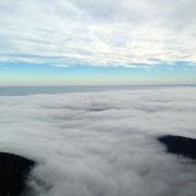 Der Pfälzer Wald in Wolken