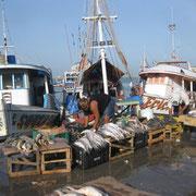 Fischmarkt Belem
