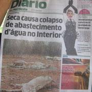 """""""Diario"""""""