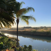 Le Must Riverfront