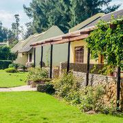 Rosedale Guestfarm