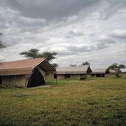 Thorn Tree Camp