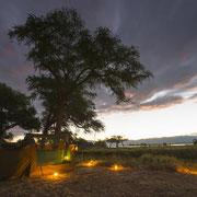 Camo Zambezi, Credit: Scottyphotograph