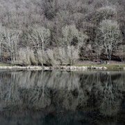 Partyservice am Riedener Waldsee
