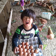 卵と共に幸せを運ぶ小さな人。(みんなの選択で世界のニワトリが狭いケージから解放されますように)