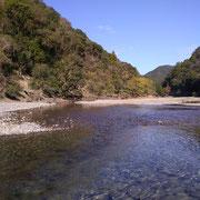 小匠川。太田川水系で唯一のダムの少し上流。自然林も多い。