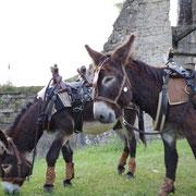 Mon p'tit frère et moi au château de Montcornet