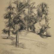 """""""Sentiero al Parco di Monza"""" - carboncino su carta paglierina cm. 27 x 20 – € 80,00"""