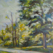 """""""Pomeriggio al Parco della Pieve a Cavalese"""" - olio su cartone telato cm. 30 x 40 - € 100,00"""