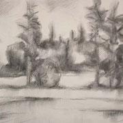 """""""Radura a Cavalese"""" - carboncino su carta cm. 21 x 29,7 – € 60,00"""
