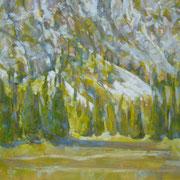"""""""Al parco nazionale Puez-Odle"""" - olio su tela cm. 50 x 40 - € 180,00"""