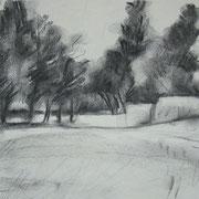 """""""Parco di Monza"""" - carboncino su carta cm. 21 x 29,7 – € 70,00"""